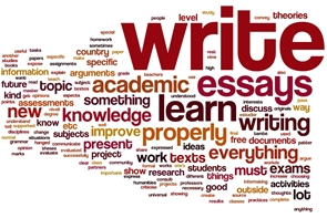 Custom essay services